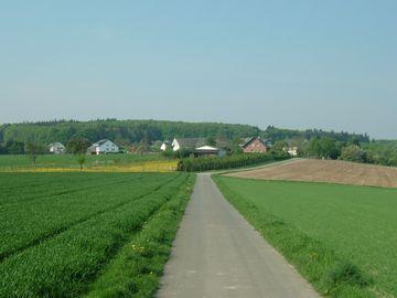 Auf dem Bild befinet sich links und rechts Wiese und im Hintergrund liegt der Ort Forst.