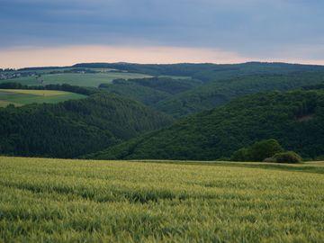 Das Bild zeigt einen weiten Ausblick über den Hunsrück bei rosa-farbigem Himmel. Es sind Felder und Bäume zu erkennen.